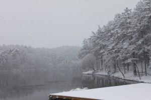 雪の大座法師池