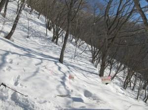 小規模な雪崩発生