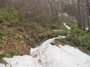 夏道の残雪
