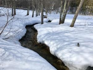 大谷地湿原に流れる小川