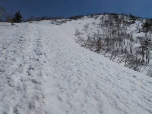 南峰へのルート