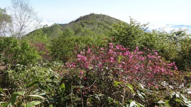 飯縄山を望む