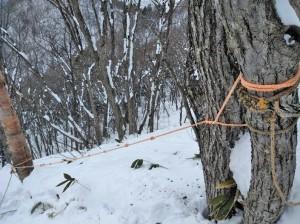 ロープの補修