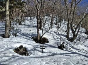 冬道へのルート