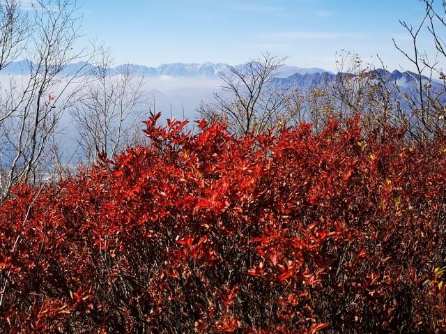 紅葉と遠景